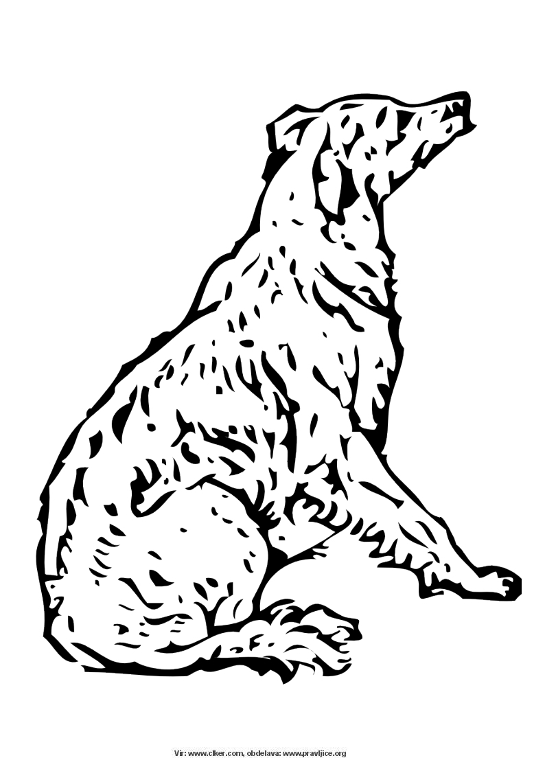 pobarvanke psi